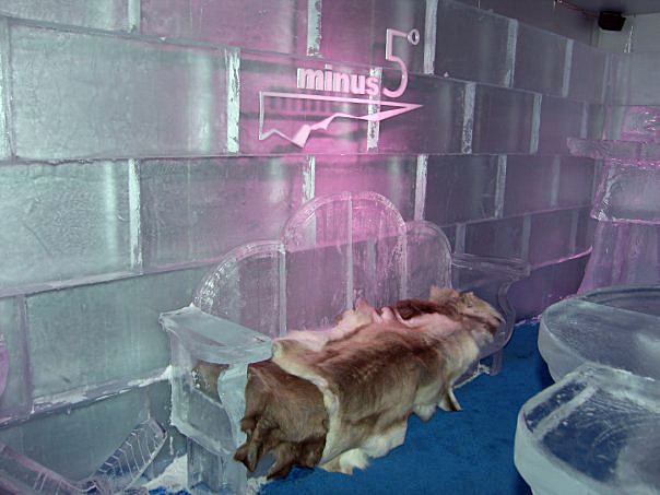 ice-bar-minus5iii