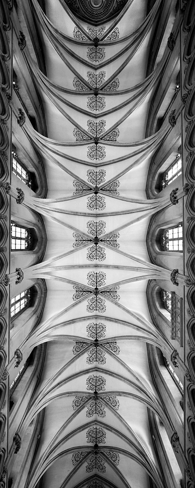 wells-cathedral-ceiling