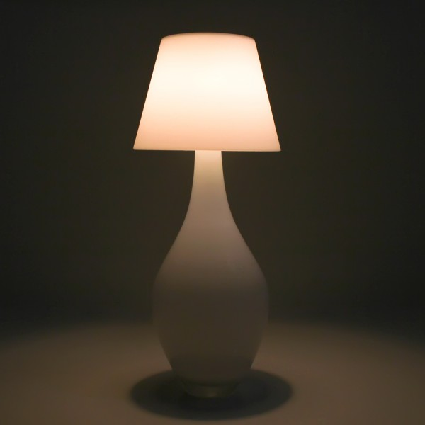 touch_lamp_vase_on_web